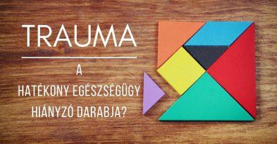 Trauma – a hatékony egészségügy hiányzó darabja?